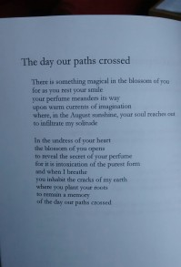 After the Rain_Paths crossed